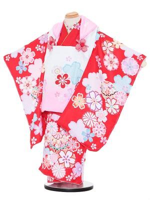 七五三レンタル(3歳女被布)3057 陽気な天使 ピンクぼかし×赤 桜