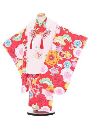 七五三レンタル(3歳女被布)3050 白×赤 松 猫