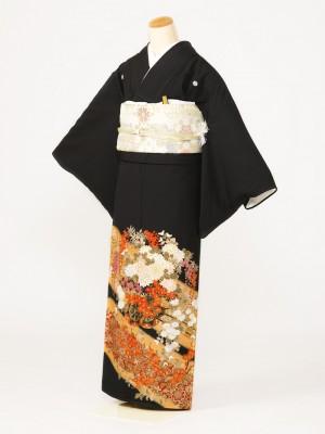 黒留袖0139道長花車梅(化繊)