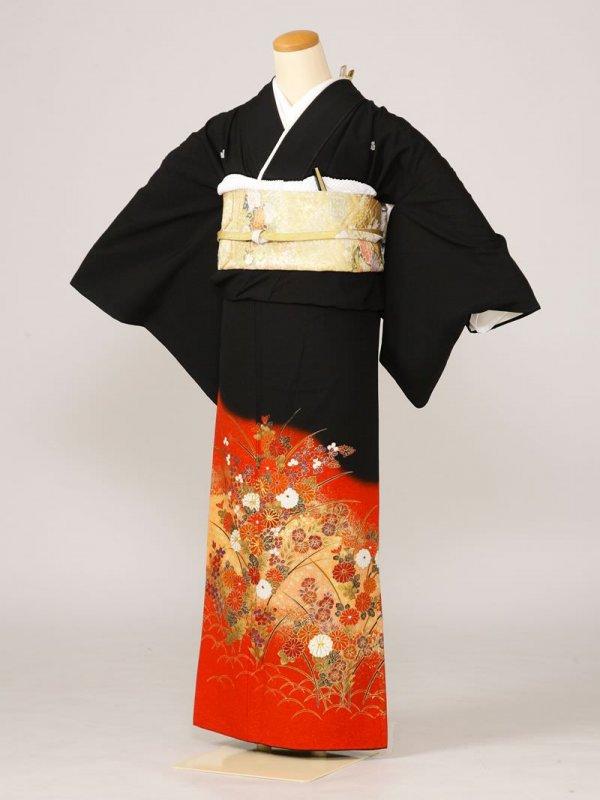 黒留袖0045赤御所車牡丹あやめ桜(化繊)