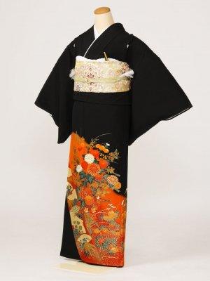 黒留袖0158菊扇面(化繊)