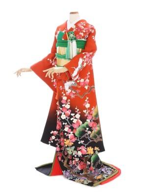 色引き振袖220オレンジ裾黒松鶴梅