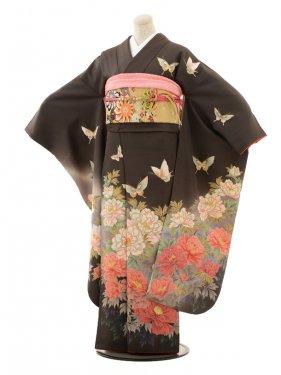 振袖/ブラウングレー/蝶としゃくやく/A027
