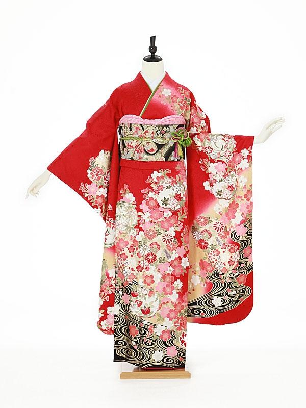 振袖0111 赤 桜/花丸文/古典