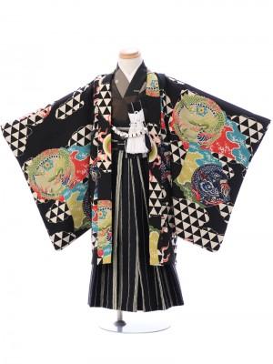 七五三(5歳男)5911黒 龍/紺 縞袴