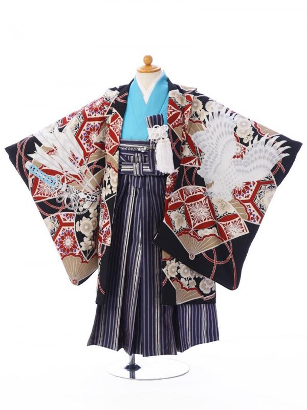 七五三(5歳男)5001黒×エンジ 鷹に扇面 縞袴