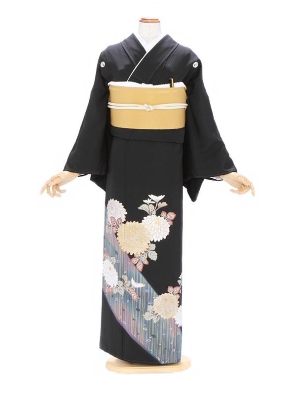 黒留袖506笹竹かごめに菊