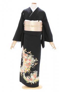黒留袖537大輪菊に桜