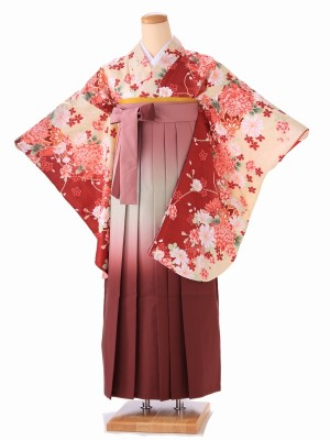 卒業式 女袴  H058 赤