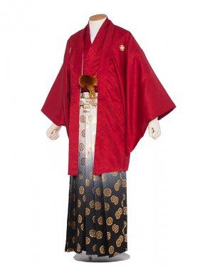 男性用袴 紋服4号赤色柄袴/4R10