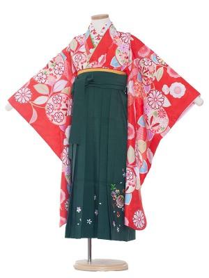 女児袴(7女)0019 赤×緑袴