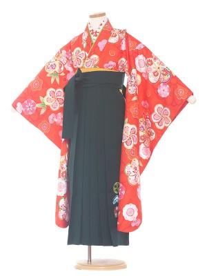 女児袴(7女)0062 赤/ねじり梅/深緑袴