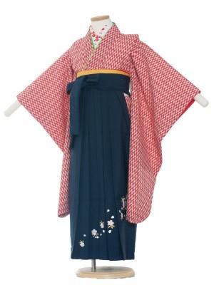 女児袴(7女)0002 赤矢絣×紺袴