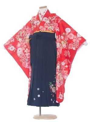 女児袴(7女)0020 赤×紺袴