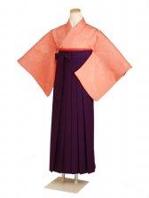 卒業式袴 無地 柿色 DD26【身長160cm位】