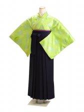 卒業式袴 無地 黄緑 DD11【身長155cm位】