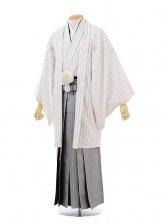 男性用袴men0048 白ストライプ×グレー袴(L)