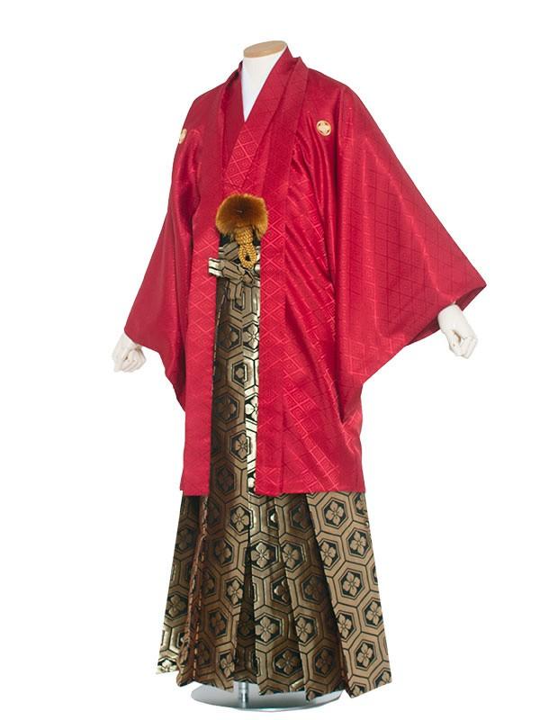 男性用袴 紋服7号 赤/7R20