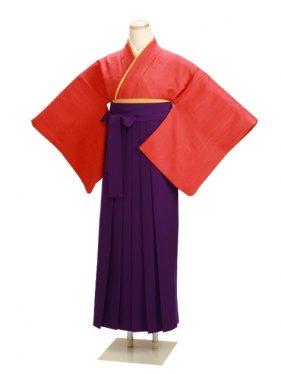 卒業式袴 正絹 レンガ 37【身長160cm位】