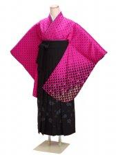 卒業式袴 ピンク 0245【身長160cm位】