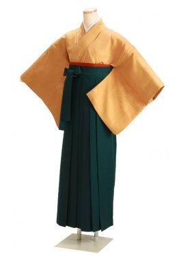 卒業式袴 正絹 からし 53【身長155cm位】