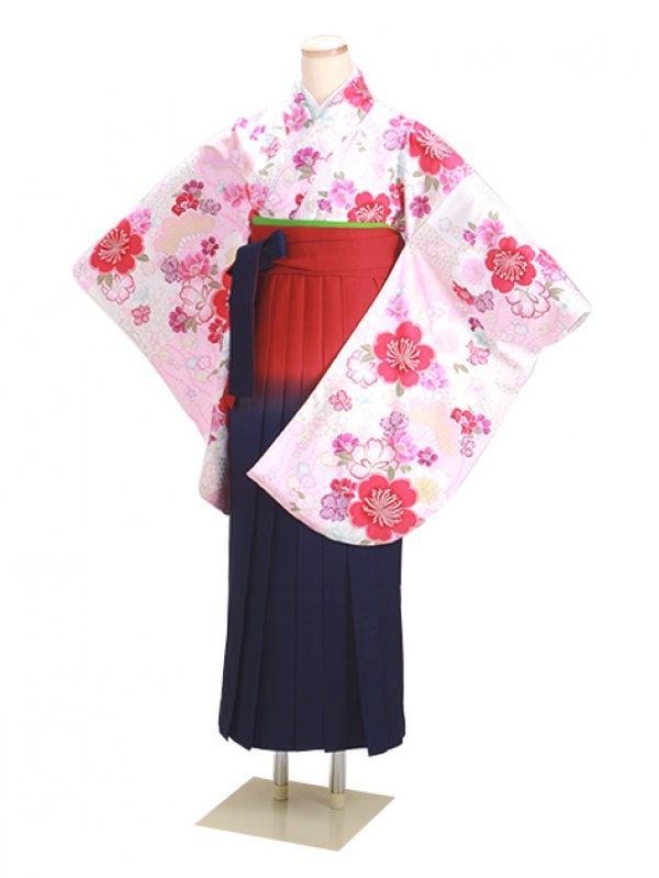 卒業式袴 白 桜 0297 柄袴【身長165cm位】