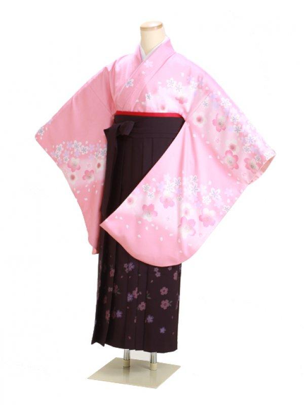 卒業式袴 ピンク 桜 0274【身長160cm位】