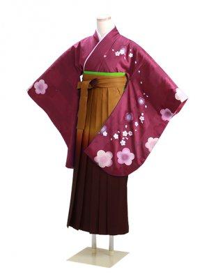 卒業式袴 ワイン 梅 0282 柄袴【身長160cm位】