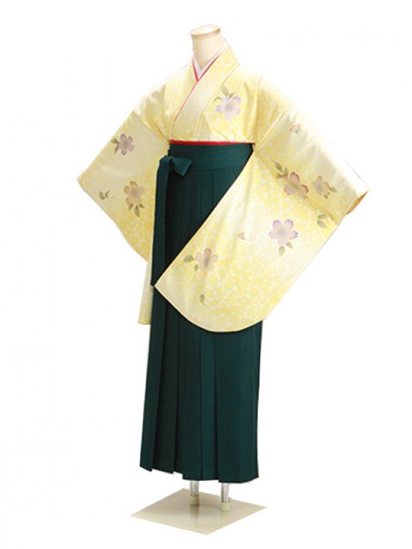 卒業式袴 黄 桜 0279【身長155cm位】
