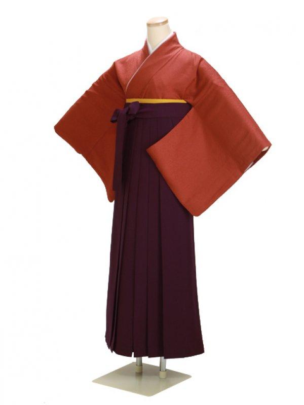 卒業式袴 正絹 レンガ 82【身長160cm位】