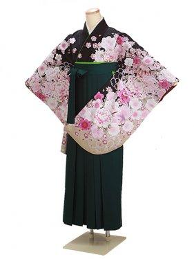 卒業式袴 黒 桜 0295【身長155cm位】