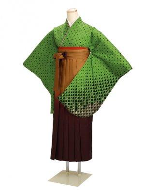 卒業式袴 グリーン 0246 柄袴【身長160cm位】