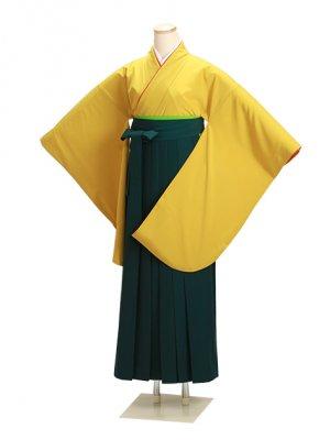 卒業式袴 からし 0208 緑袴【身長155cm位】