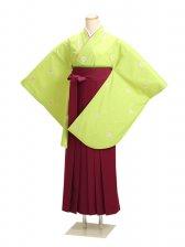 卒業式袴 グリーン 小桜 0242【身長170cm位】
