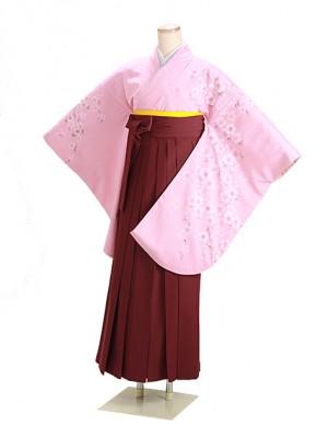 卒業式袴 ピンク 桜吹雪 0260 エンジ袴【身長165cm位】