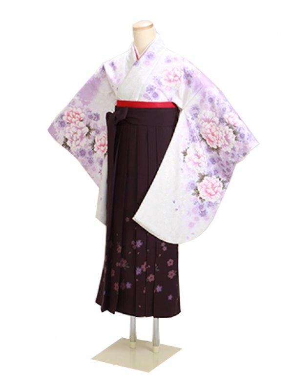 卒業式袴 白 ぼたん桜 0290【身長160cm位】