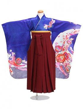 七五三 袴 5~7歳女児 105 卒園式 入学式
