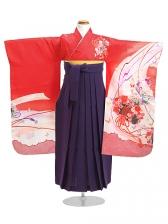七五三 袴 5~7歳女児 107 卒園式 入学式