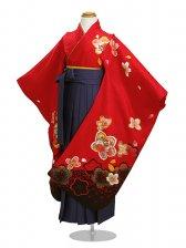 七五三 袴 5~7歳女児 141 卒園式 入学式