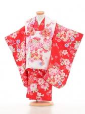 753レンタル(3歳女被布)03111白×赤菊桜