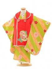 七五三(3歳女被布)3189 赤×黄緑 梅