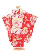 753レンタル(3歳女被布)03110白×赤桜