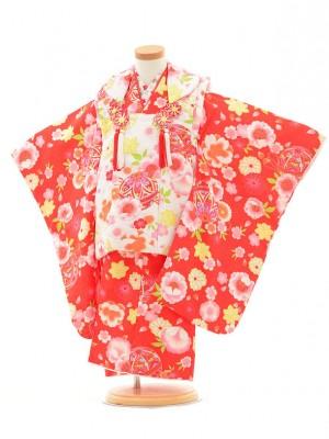 七五三レンタル(3歳女の子被布)3158白×赤花