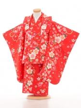 753レンタル(3歳女被布)03101赤桜うさぎ
