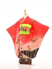 753レンタル(7歳女)7062ローズ裾黒蝶の舞