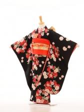 753レンタル(7歳女)7020黒地・菊・桜花裾か