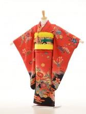 753レンタル(7歳女)7104赤黄黒・紅型花鶴