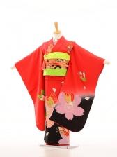 753レンタル(7歳女)7007赤地裾黒大桜蝶