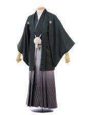 成人式卒業式袴レンタル(男)D018モスグリーン紋付×