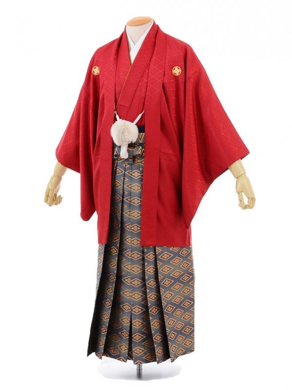 成人式卒業式袴レンタル(男)D006赤紋付×ゴールド